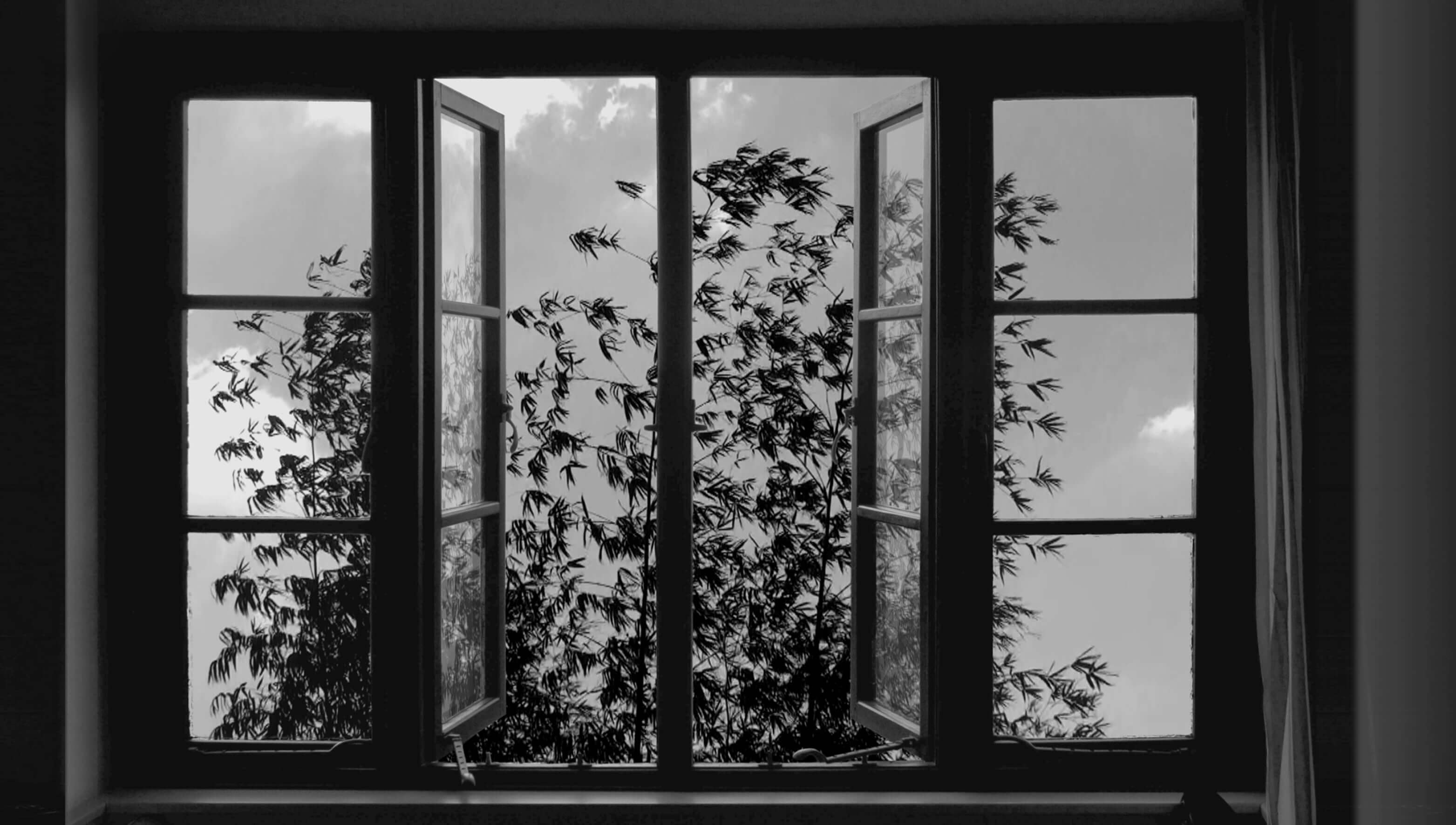 24frames_kiarostami_photo4.jpg